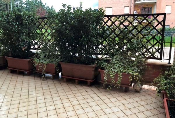 Appartamento in vendita a Corciano, San Mariano Di Corciano, Con giardino, 92 mq