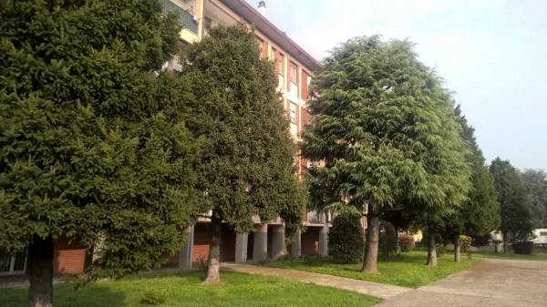 Appartamento in affitto a Magenta, Stazione, Arredato, con giardino, 85 mq