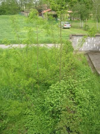 Villetta a schiera in vendita a Casal Cermelli, Casalcermelli, Con giardino, 140 mq - Foto 11