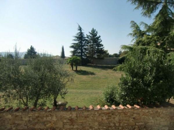 Appartamento in affitto a Castrocaro Terme e Terra del Sole, Centro, Arredato, 45 mq