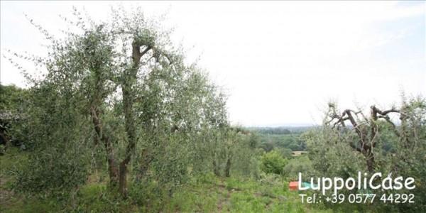Villa in vendita a Siena, Con giardino, 165 mq