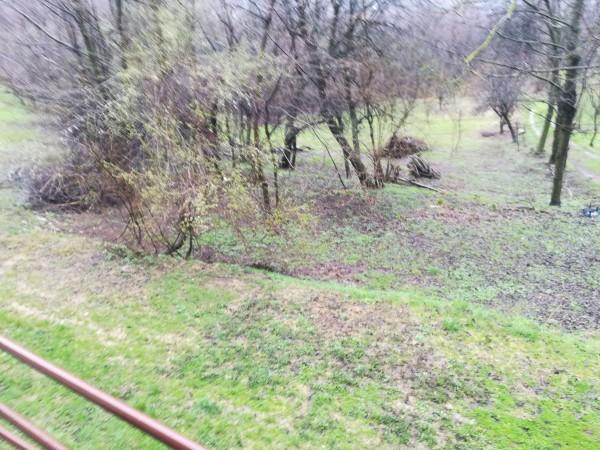 Rustico/Casale in vendita a Viola, Alta, Con giardino, 160 mq - Foto 5
