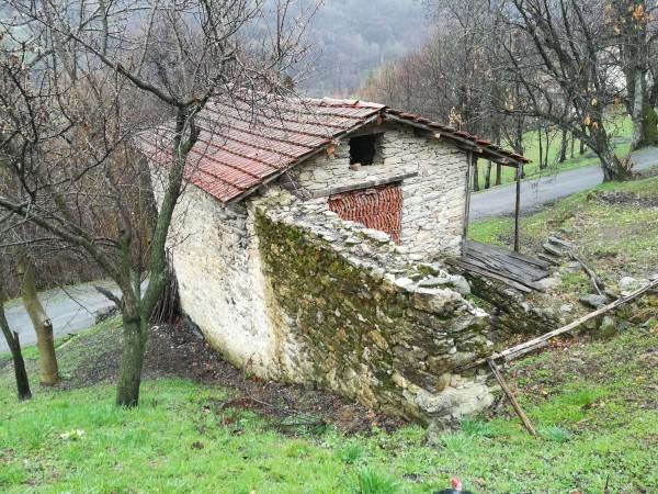 Rustico/Casale in vendita a Viola, Alta, 50 mq