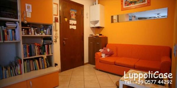 Appartamento in vendita a Monteriggioni, 67 mq - Foto 6