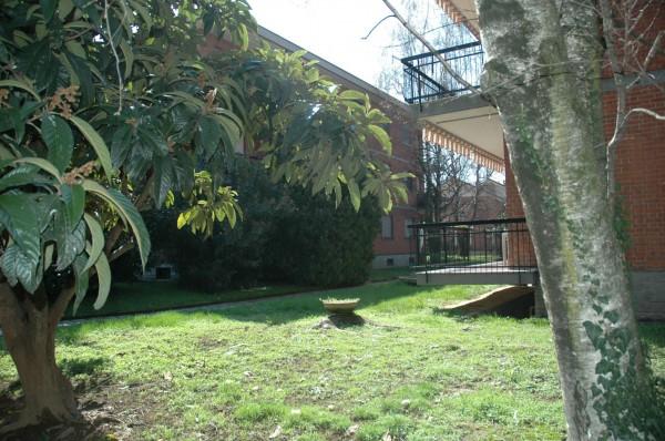 Appartamento in vendita a Alpignano, Semicentro, Con giardino, 145 mq - Foto 15