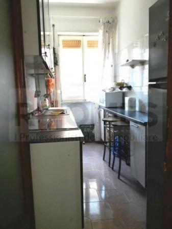 Appartamento in affitto a Roma, Appio Claudio, Arredato, 85 mq - Foto 16