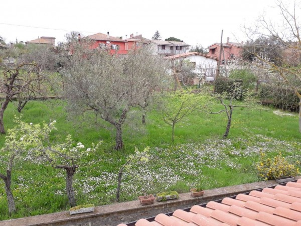 Villa in vendita a Vetralla, Con giardino, 115 mq - Foto 5