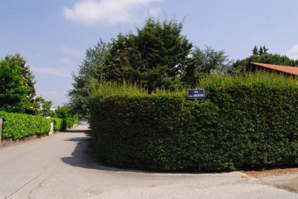 Villa in affitto a Castelletto sopra Ticino, Arredato, con giardino, 210 mq - Foto 16