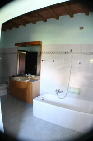Appartamento in affitto a San Casciano in Val di Pesa, Con giardino, 100 mq - Foto 8