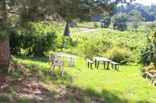 Appartamento in affitto a San Casciano in Val di Pesa, Con giardino, 100 mq - Foto 2