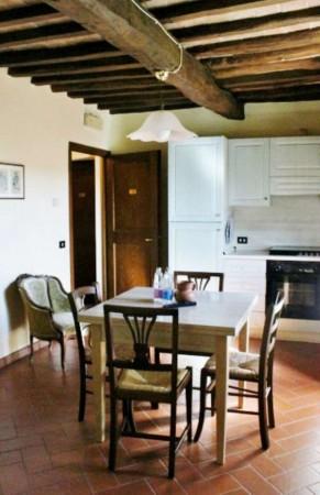Appartamento in affitto a San Casciano in Val di Pesa, Arredato, con giardino, 70 mq