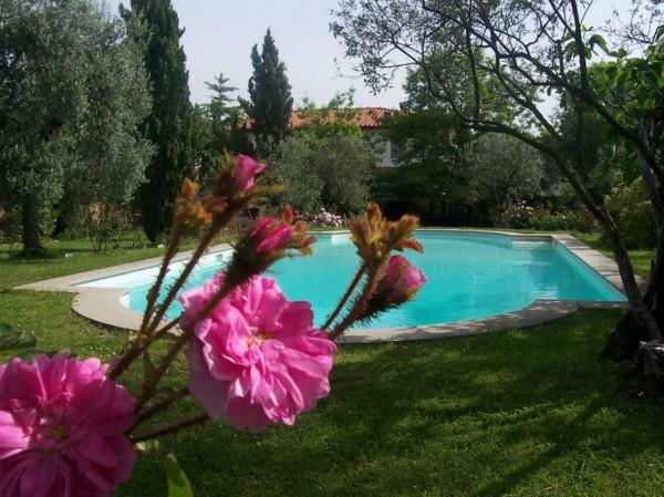Appartamento in affitto a San Casciano in Val di Pesa, Arredato, con giardino, 30 mq
