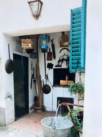 Rustico/Casale in affitto a San Casciano in Val di Pesa, Arredato, con giardino, 300 mq - Foto 11