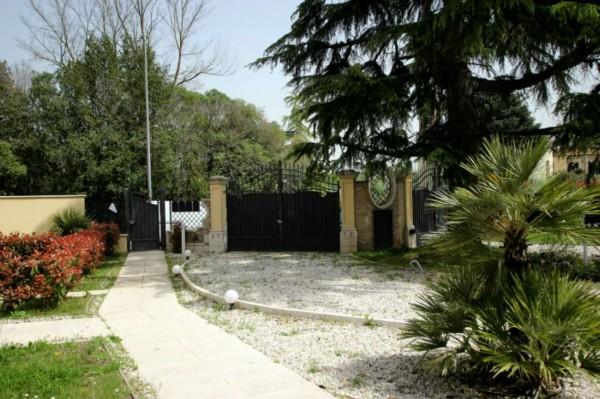 Appartamento in affitto a Roma, Flaminia - Grottarossa - Saxa Rubra, Con giardino, 50 mq - Foto 10