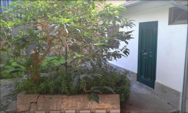 Appartamento in vendita a Imperia, 110 mq