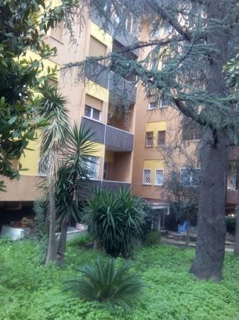 Appartamento in affitto a Roma, Talenti, Con giardino, 100 mq - Foto 14