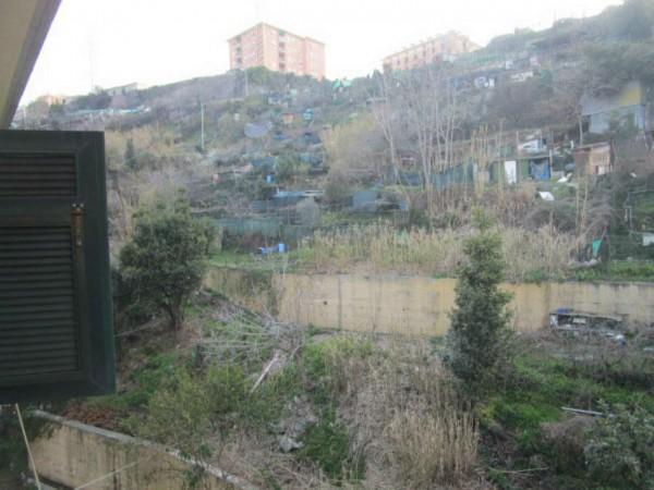 Appartamento in affitto a Genova, Sampierdarena, 60 mq - Foto 7