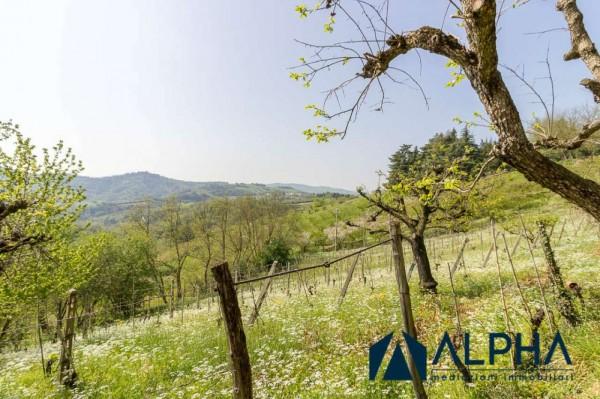 Casa indipendente in vendita a Bertinoro, Con giardino, 200 mq - Foto 13