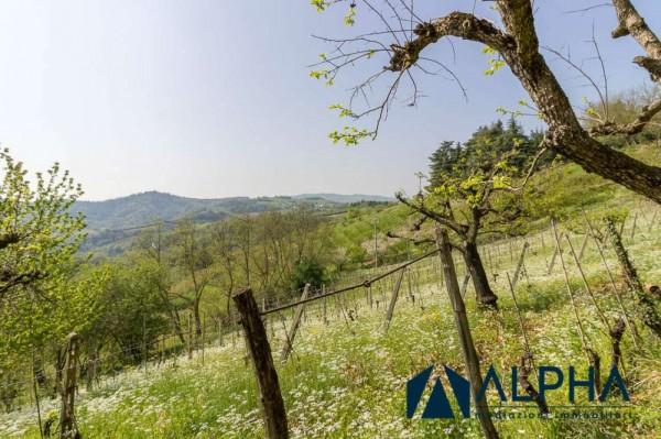 Casa indipendente in vendita a Bertinoro, Con giardino, 200 mq - Foto 5
