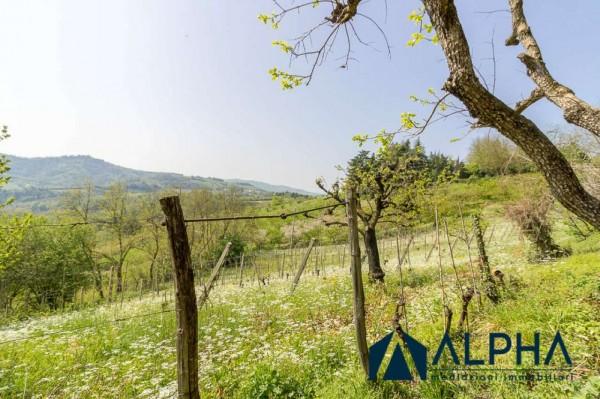 Casa indipendente in vendita a Bertinoro, Con giardino, 200 mq - Foto 40