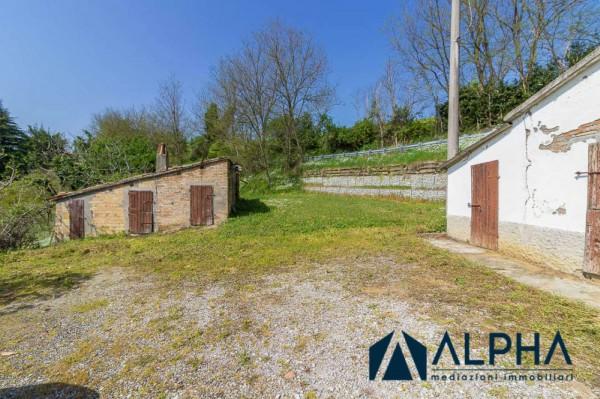 Casa indipendente in vendita a Bertinoro, Con giardino, 200 mq - Foto 44