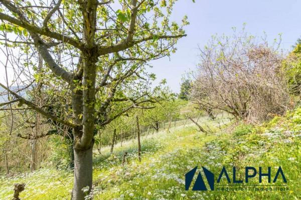 Casa indipendente in vendita a Bertinoro, Con giardino, 200 mq - Foto 41