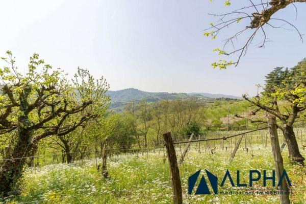 Casa indipendente in vendita a Bertinoro, Con giardino, 200 mq - Foto 6