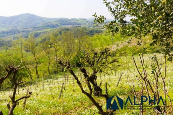 Casa indipendente in vendita a Bertinoro, Con giardino, 200 mq - Foto 25