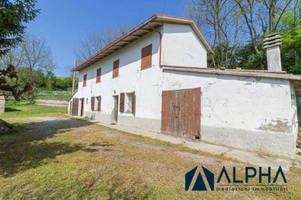 Casa indipendente in vendita a Bertinoro, Con giardino, 200 mq