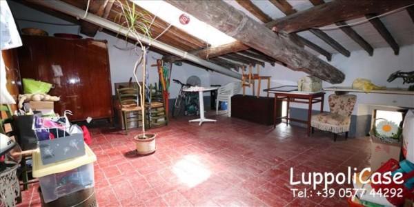 Appartamento in affitto a Siena, 50 mq - Foto 2