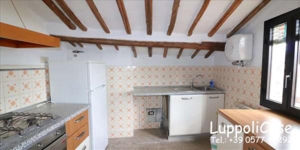 Appartamento in affitto a Siena, 50 mq - Foto 18