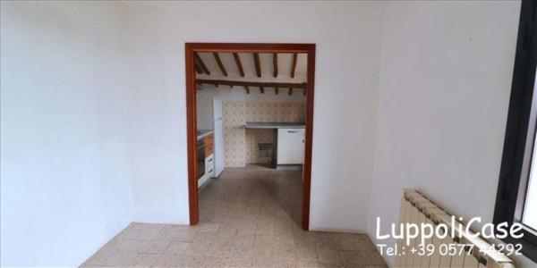 Appartamento in affitto a Siena, 50 mq - Foto 16