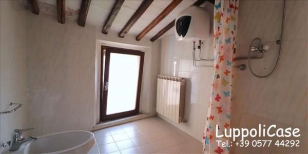 Appartamento in affitto a Siena, 50 mq - Foto 4