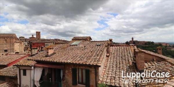 Appartamento in affitto a Siena, 50 mq - Foto 13