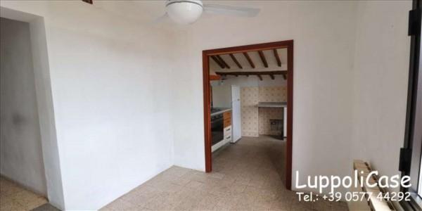 Appartamento in affitto a Siena, 50 mq - Foto 15