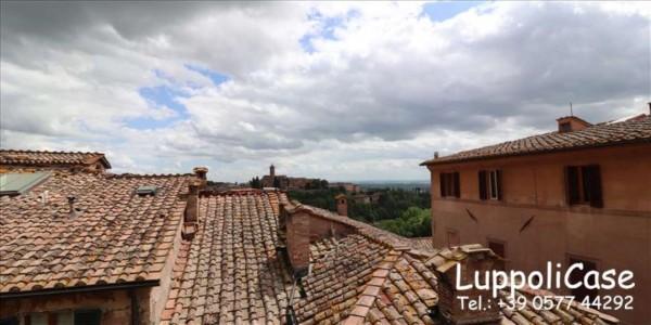 Appartamento in affitto a Siena, 50 mq - Foto 14