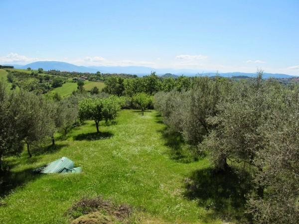 Casa indipendente in vendita a Perugia, San Matteo, Con giardino, 350 mq - Foto 3