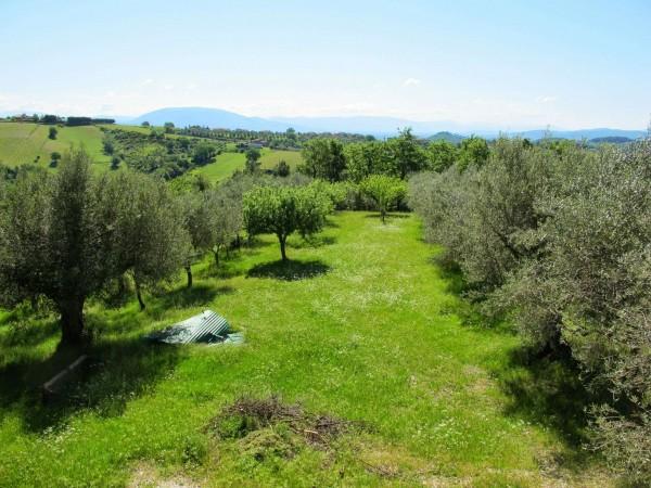 Casa indipendente in vendita a Perugia, San Matteo, Con giardino, 350 mq
