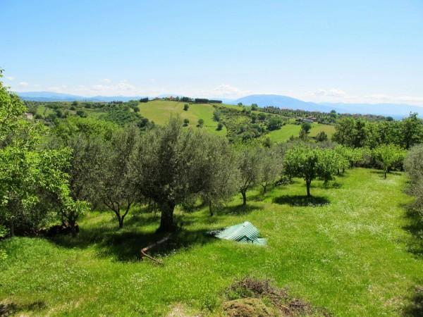 Casa indipendente in vendita a Perugia, San Matteo, Con giardino, 350 mq - Foto 2