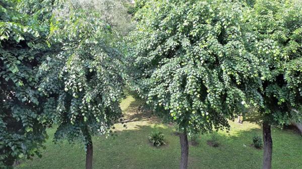 Appartamento in vendita a Monza, Centrale, Arredato, con giardino, 70 mq - Foto 8