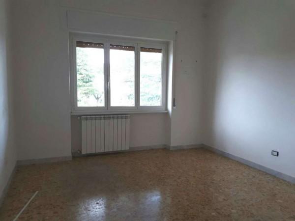 Appartamento in affitto a Roma, Statuario, Con giardino, 87 mq - Foto 7