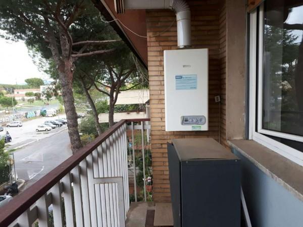 Appartamento in affitto a Roma, Statuario, Con giardino, 87 mq - Foto 13