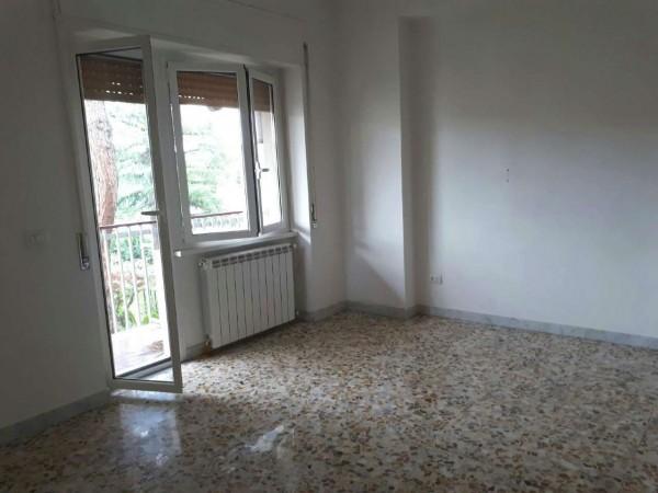 Appartamento in affitto a Roma, Statuario, Con giardino, 87 mq - Foto 4