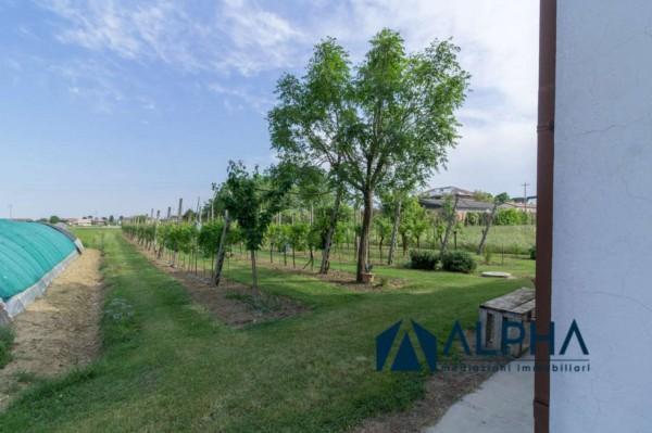 Villa in vendita a Bertinoro, Con giardino, 220 mq - Foto 32