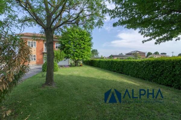 Villa in vendita a Bertinoro, Con giardino, 220 mq