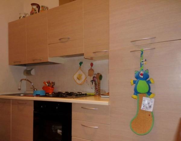 Appartamento in affitto a Forlì, Grandi Italiani, Arredato, con giardino, 45 mq - Foto 4