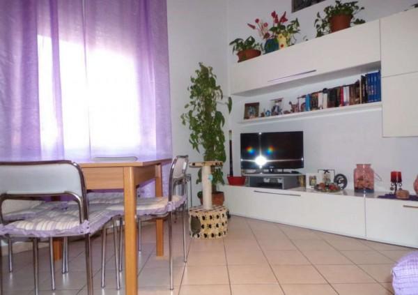 Appartamento in affitto a Forlì, Grandi Italiani, Arredato, con giardino, 45 mq - Foto 19