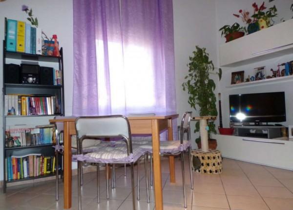 Appartamento in affitto a Forlì, Grandi Italiani, Arredato, con giardino, 45 mq - Foto 18