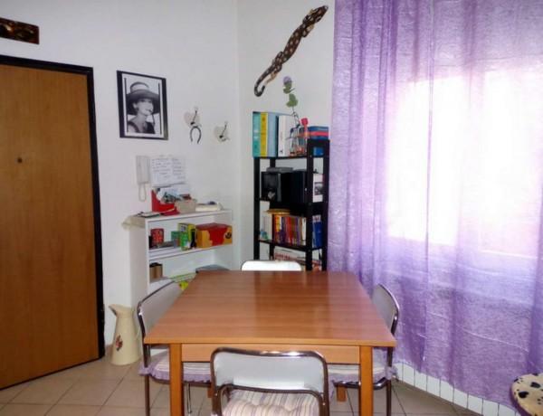 Appartamento in affitto a Forlì, Grandi Italiani, Arredato, con giardino, 45 mq - Foto 17