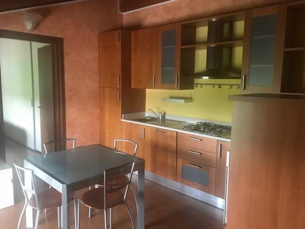 Bilocale in affitto a Brescia, Roncadelle, 45 mq